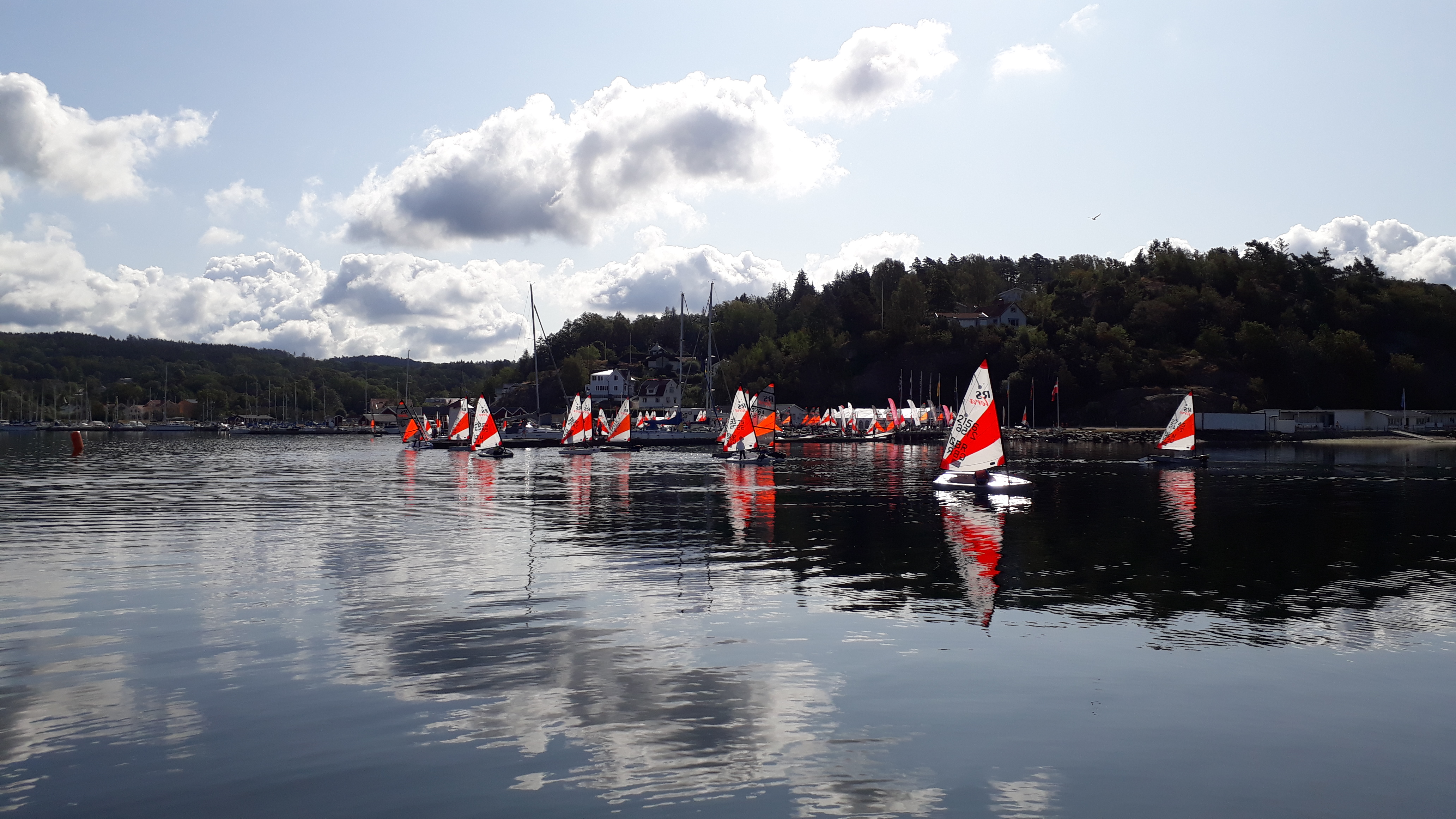 Voices From The Boat Park – Friday 9th